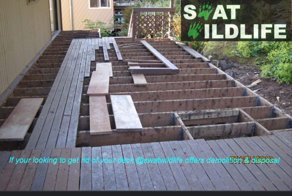 SWAT wildlife deck demolition