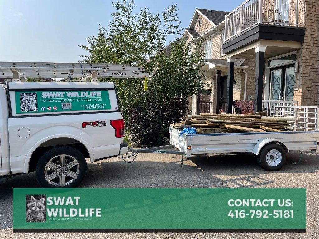 SWAT wildlife demolition