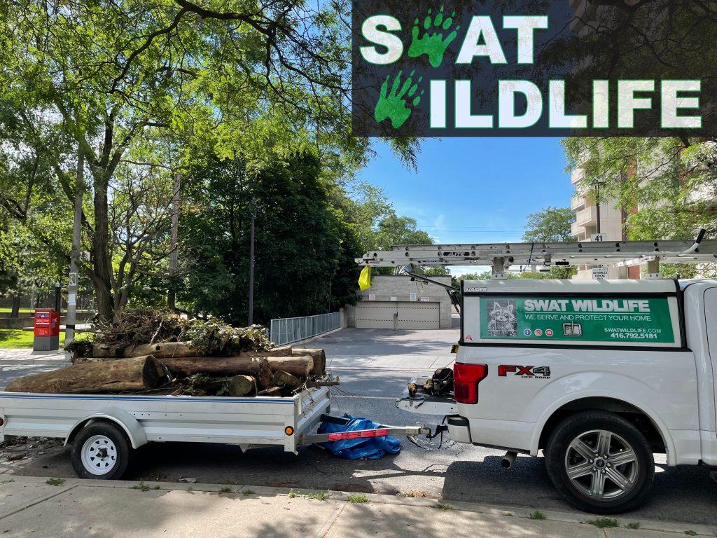 SWAT Wildlife Demolition Truck