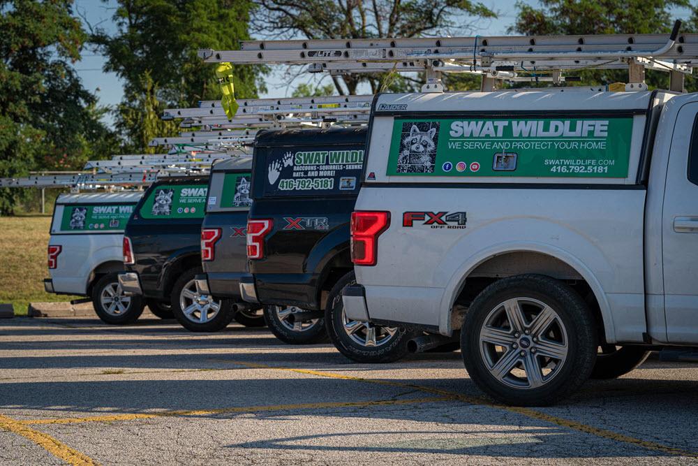 Off Road Vans - SWAT Wildlife